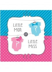 Serviettes Baby shower fille ou garçon (x16)