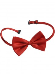 Noeud papillon rouge luxe