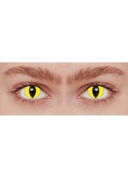 Lentilles de contact chat jaune